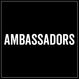 LINKS TO AMBASSADORS